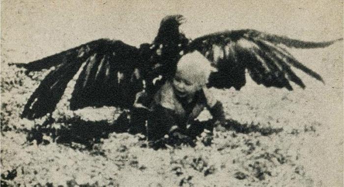 ������ ���� ���� ���� 1932�