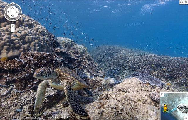 http://www.aljalawi.net/wp-content/uploads/2012/09/google-maps-reefs.jpg