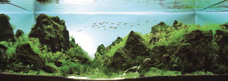 19-Llin-Ting-Quan-Taiwan