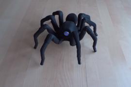 فيديو : عنكبوت آلي يرقص سالسا !
