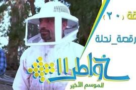 خواطر 11 / الحلقة 20 : رقصة نحلة